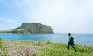 韓国最高峰・ハルラ山へ!  高橋庄太郎氏がゆく済州島REAL BACKPACKING